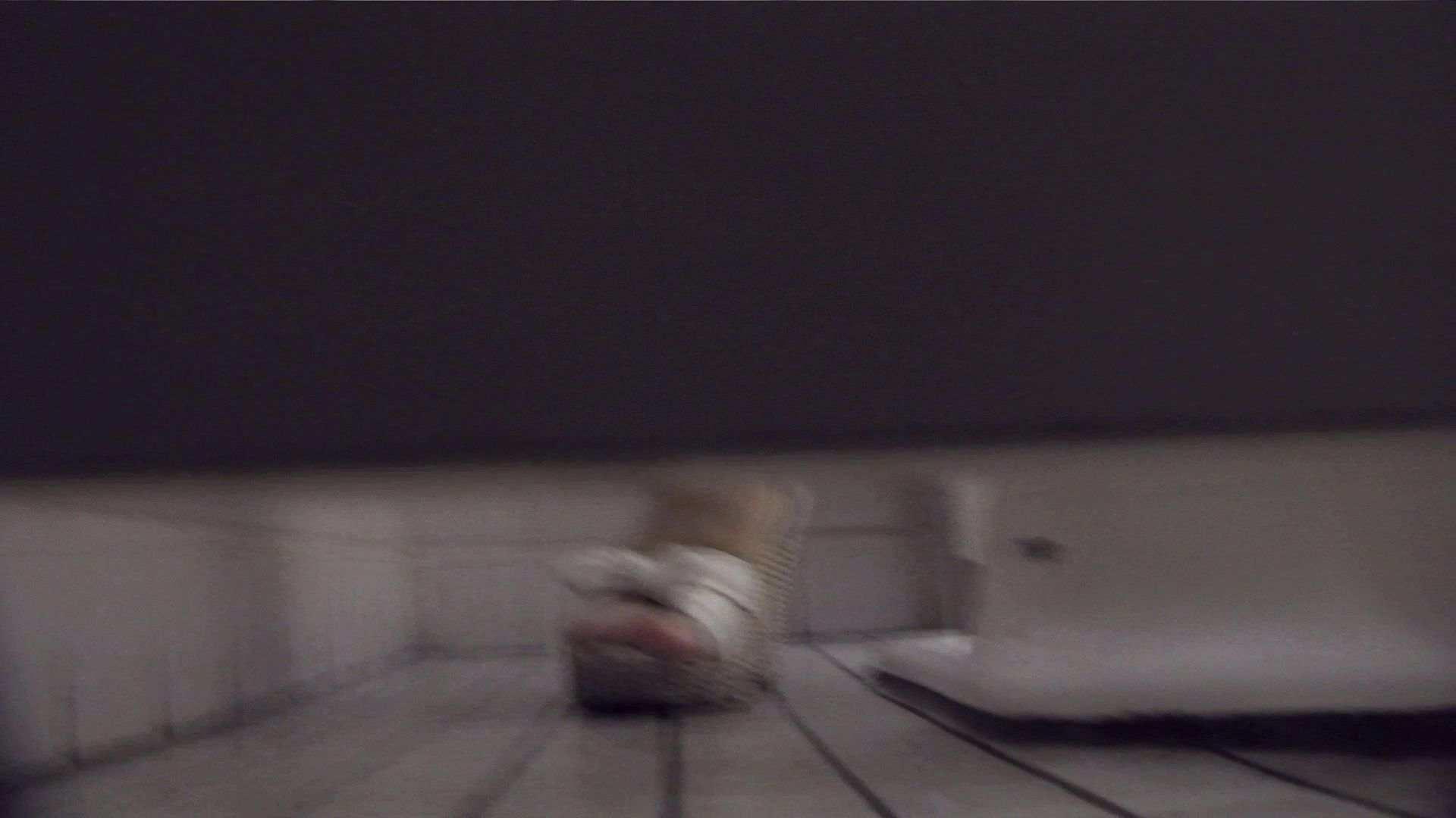 vol.06 命がけ潜伏洗面所! ツン!とした子は割と几帳面? プライベート 覗きおまんこ画像 95pic 67