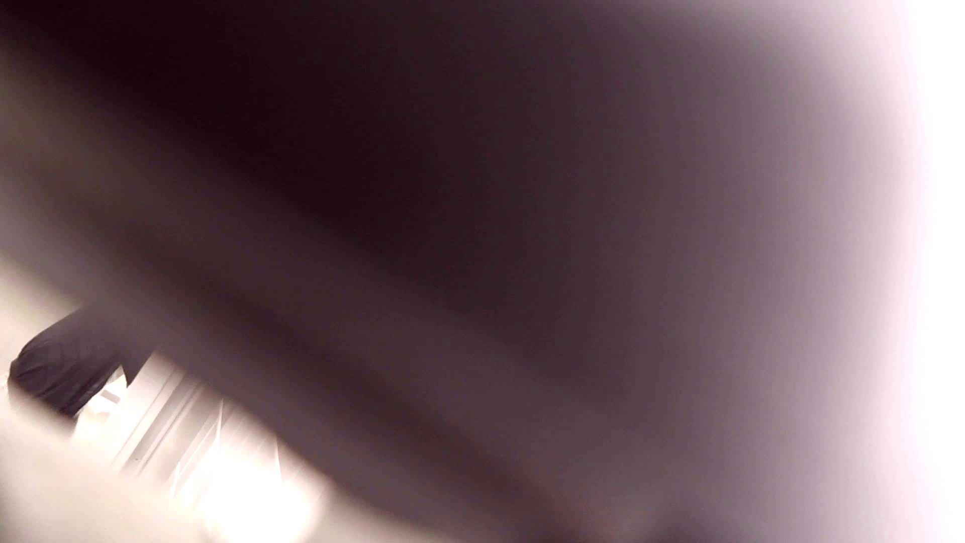 巨乳 乳首:vol.14 命がけ潜伏洗面所! ついちゃいましたね。:ピープフォックス(盗撮狐)