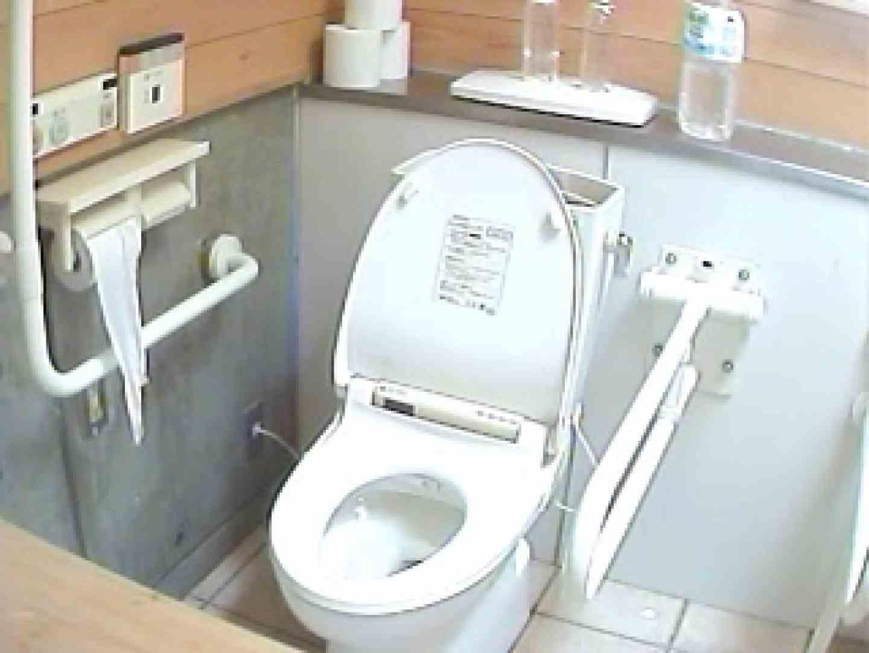 水着ギャル洋式洗面所 Vol.3 OLの実態   放尿  53pic 1