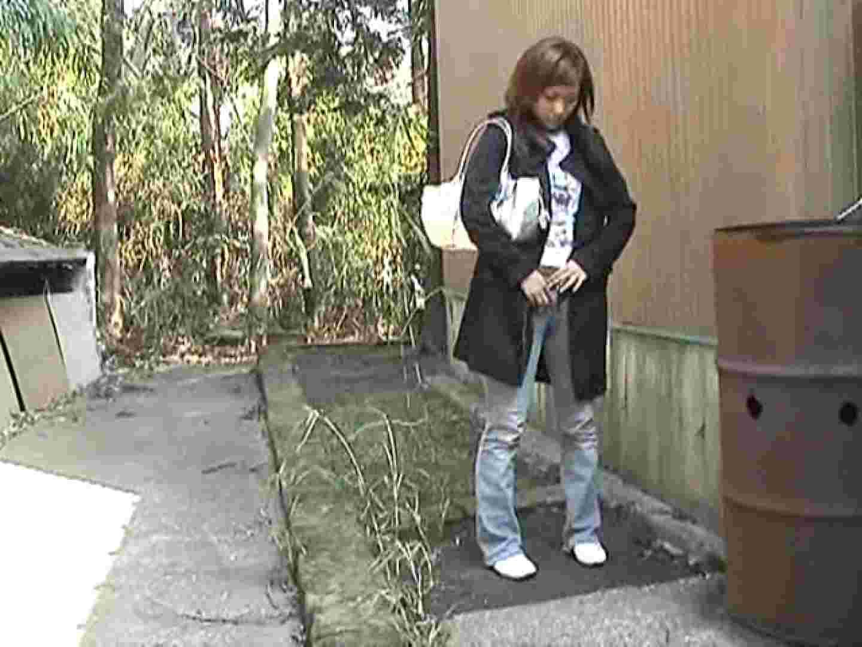 排便・排尿コレクションVol.1 OLの実態 隠し撮りセックス画像 65pic 30