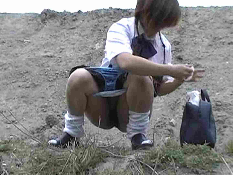 排便・排尿コレクションVol.1 排泄 のぞき動画画像 65pic 40