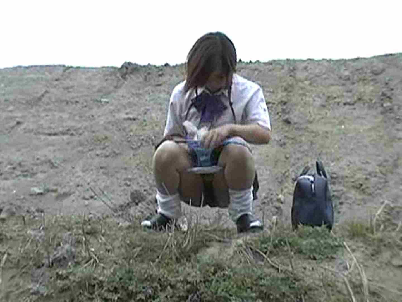 排便・排尿コレクションVol.1 野外 隠し撮りすけべAV動画紹介 65pic 41