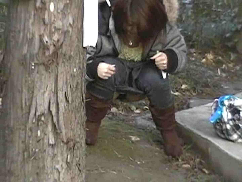 排便・排尿コレクションVol.1 排泄 のぞき動画画像 65pic 54