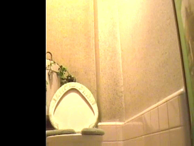 排便・排尿コレクションVol.2 OLの実態 のぞきおめこ無修正画像 71pic 18