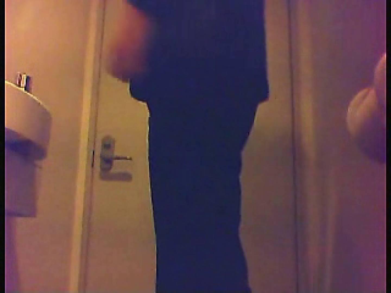漏洩厳禁!!某王手保険会社のセールスレディーの洋式洗面所!!Vol.5 盗撮 ぱこり動画紹介 67pic 3