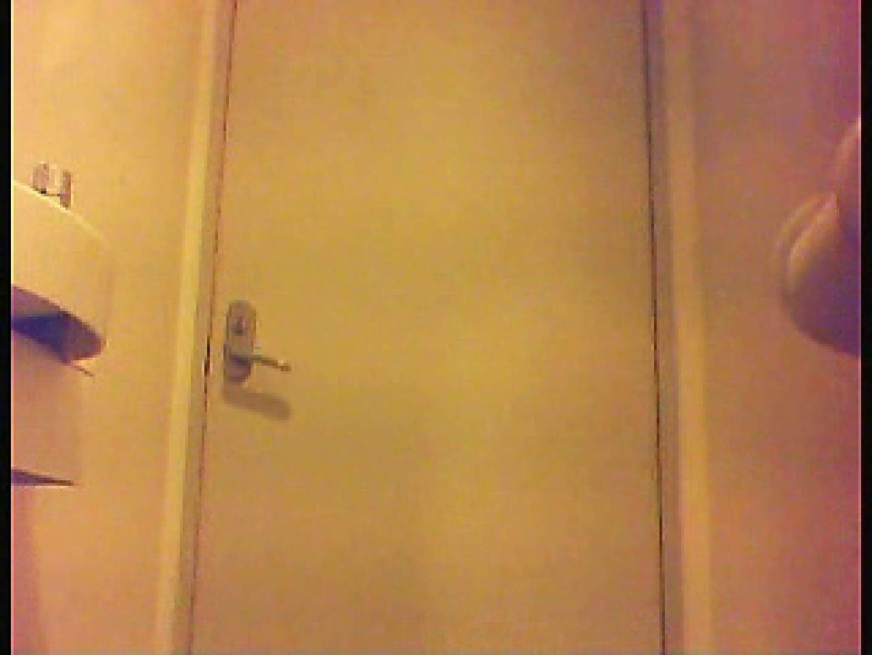 漏洩厳禁!!某王手保険会社のセールスレディーの洋式洗面所!!Vol.5 盗撮 ぱこり動画紹介 67pic 43