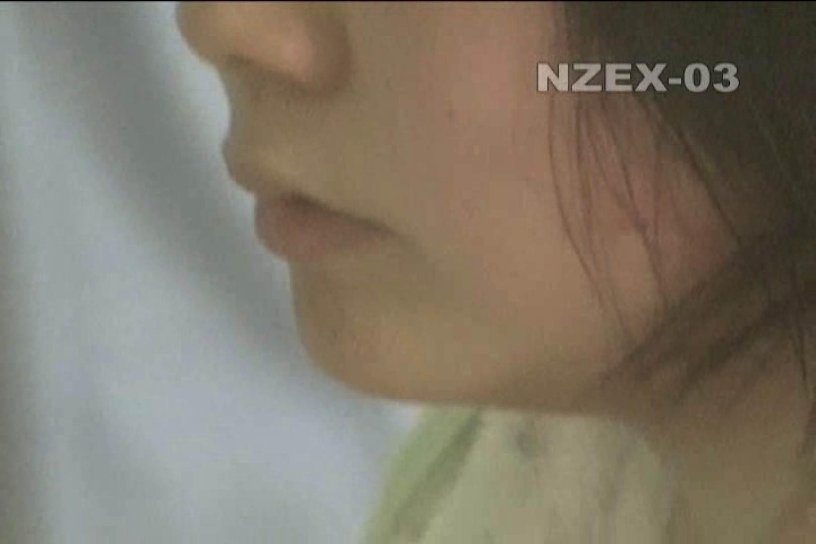 巨乳 乳首:覗き穴 nzex-03_01:ピープフォックス(盗撮狐)