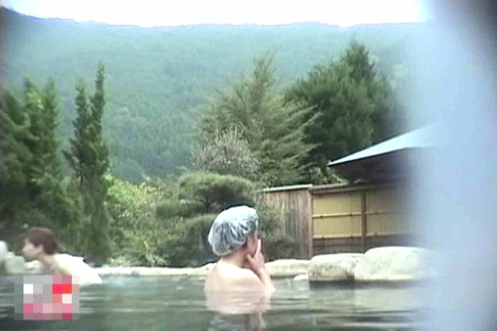 巨乳 乳首:女体舞う 女体接写森林浴場Vol.2:ピープフォックス(盗撮狐)