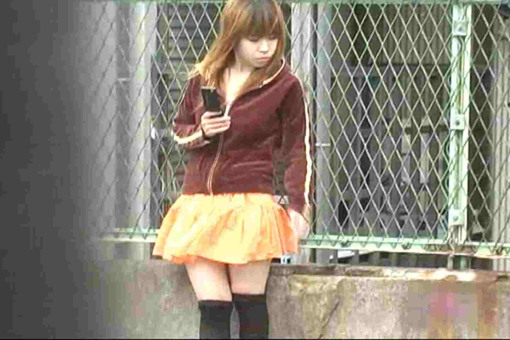 巨乳 乳首:検証!隠し撮りスカートめくり!!Vol.2:ピープフォックス(盗撮狐)