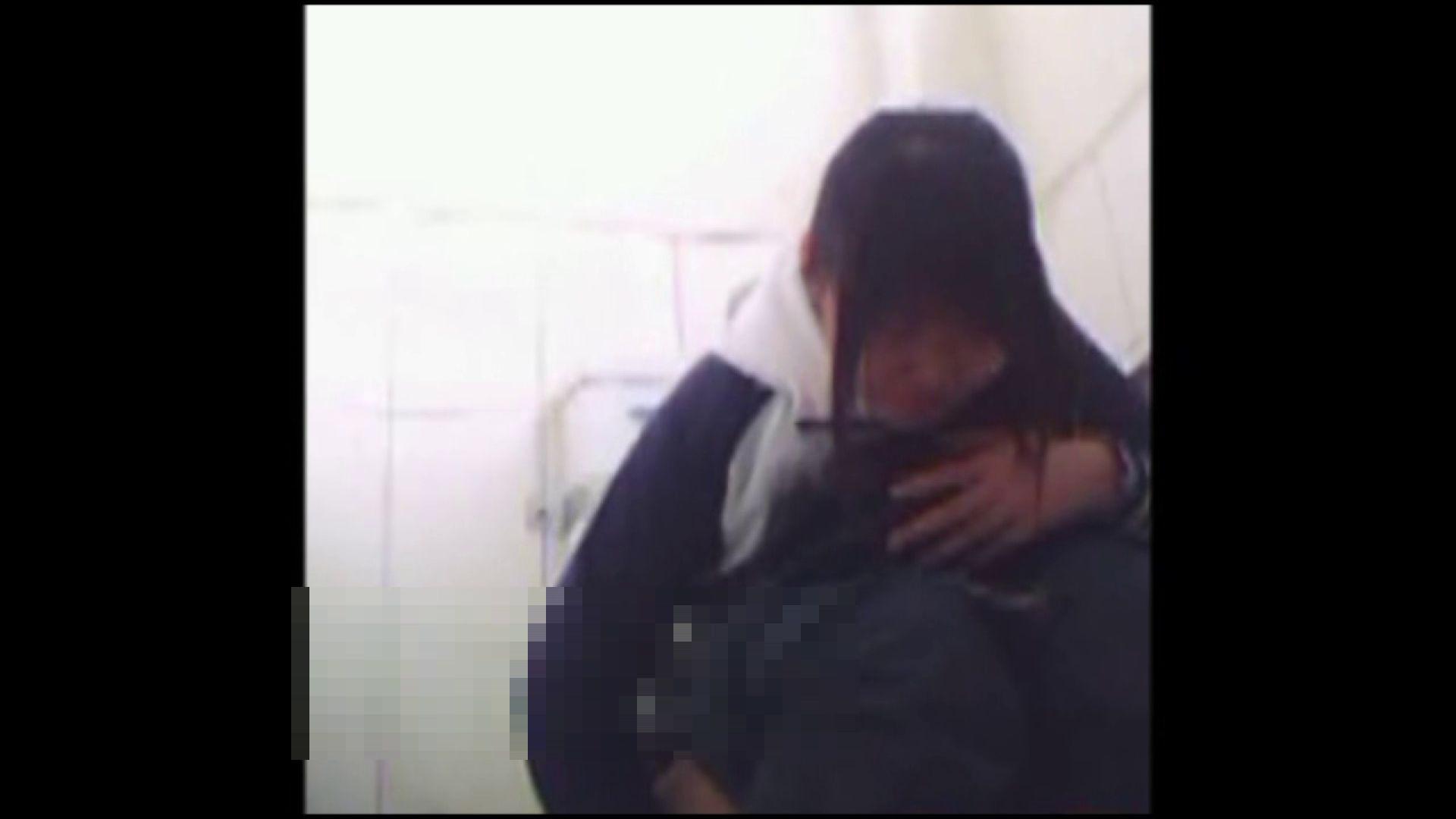 巨乳 乳首:洗面所で暗躍する撮師たちの潜入記Vol.11:ピープフォックス(盗撮狐)