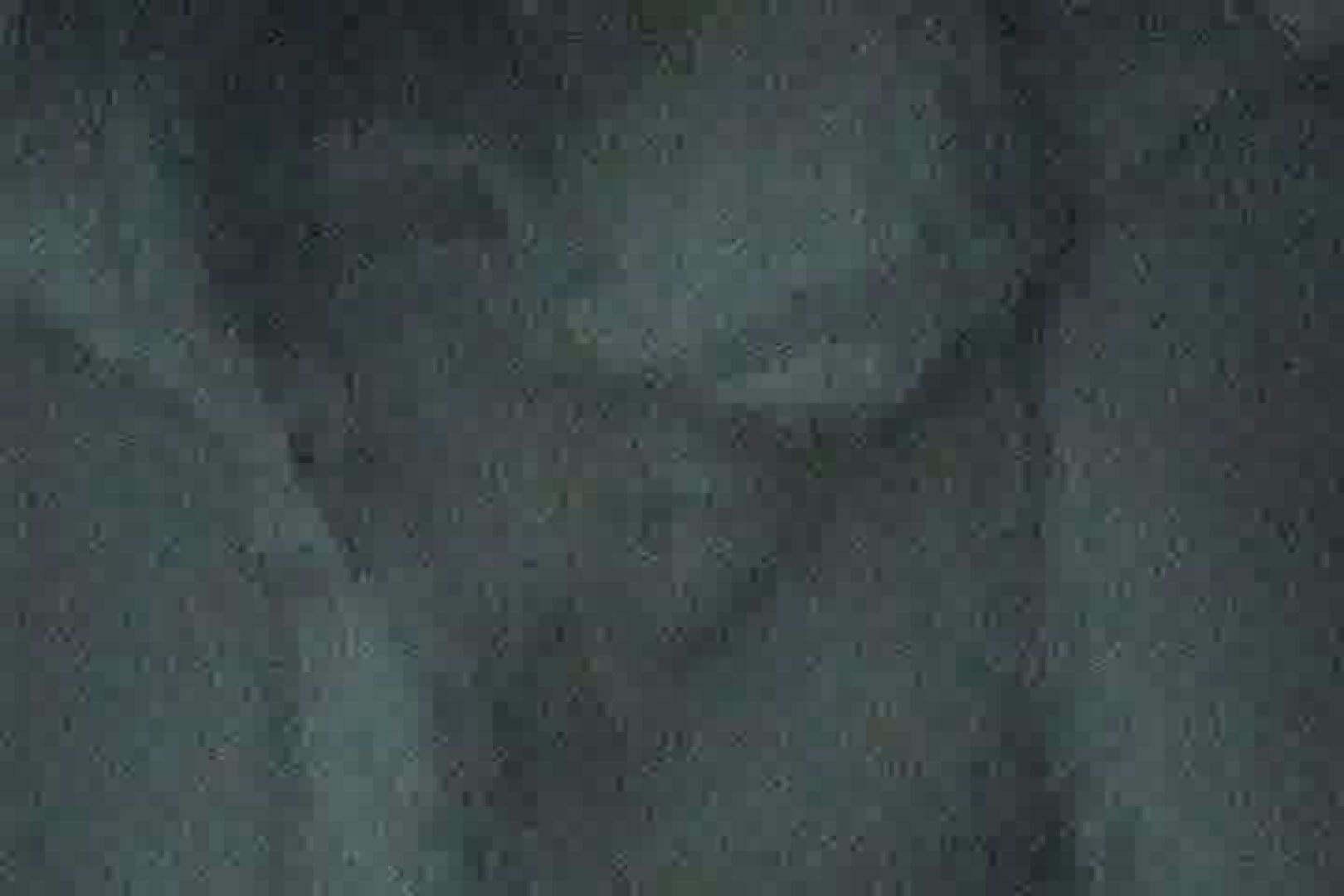 巨乳 乳首:充血監督の深夜の運動会Vol.106:ピープフォックス(盗撮狐)