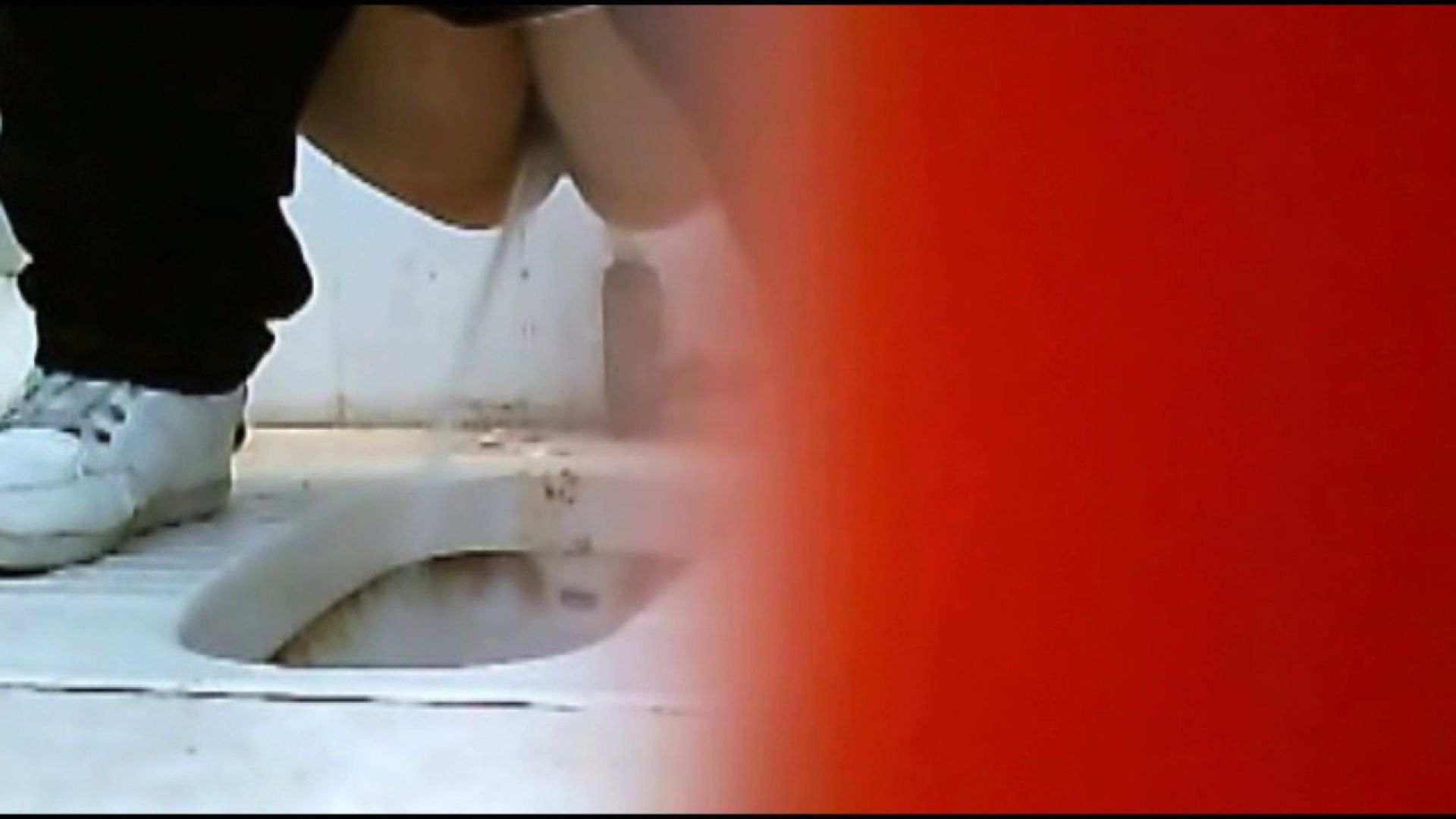 巨乳 乳首:洗面所で暗躍する撮師たちの潜入記Vol.24:ピープフォックス(盗撮狐)