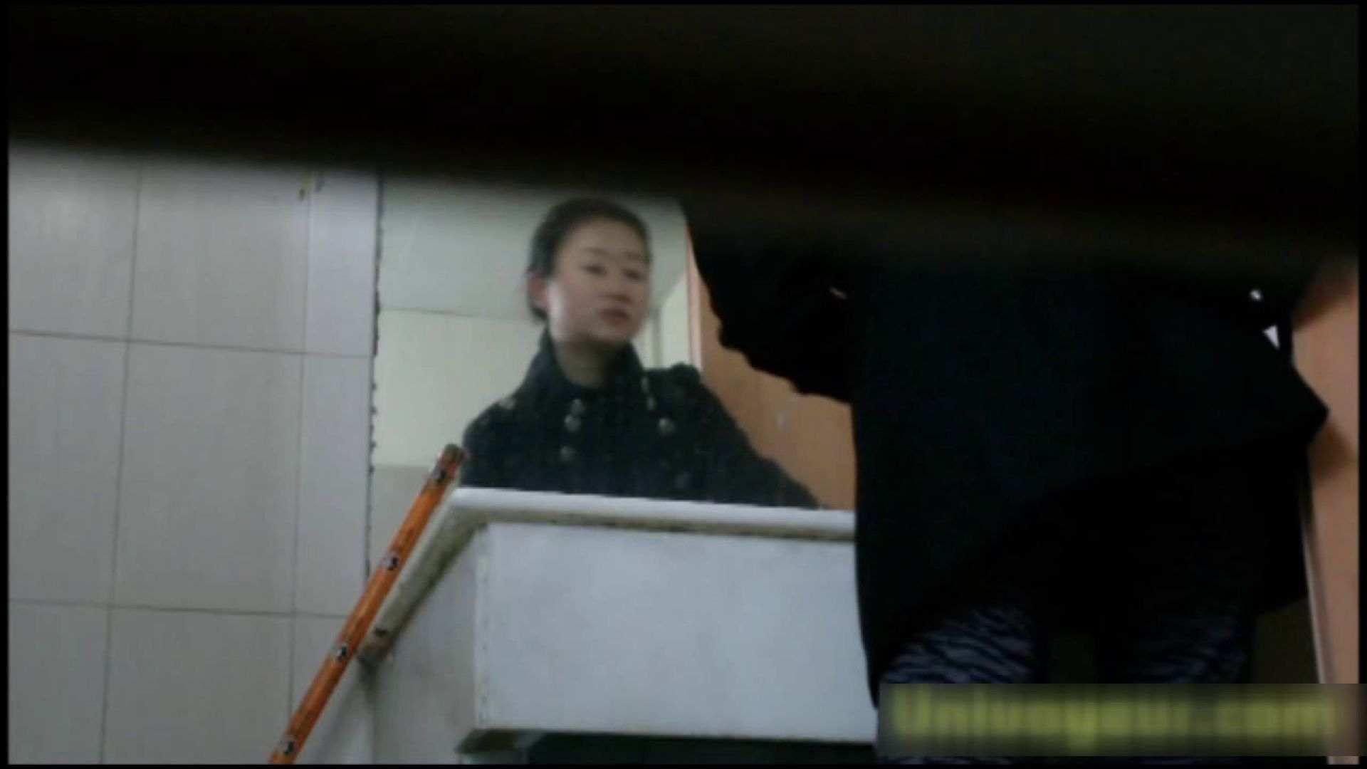 巨乳 乳首:洗面所で暗躍する撮師たちの潜入記Vol.27:ピープフォックス(盗撮狐)