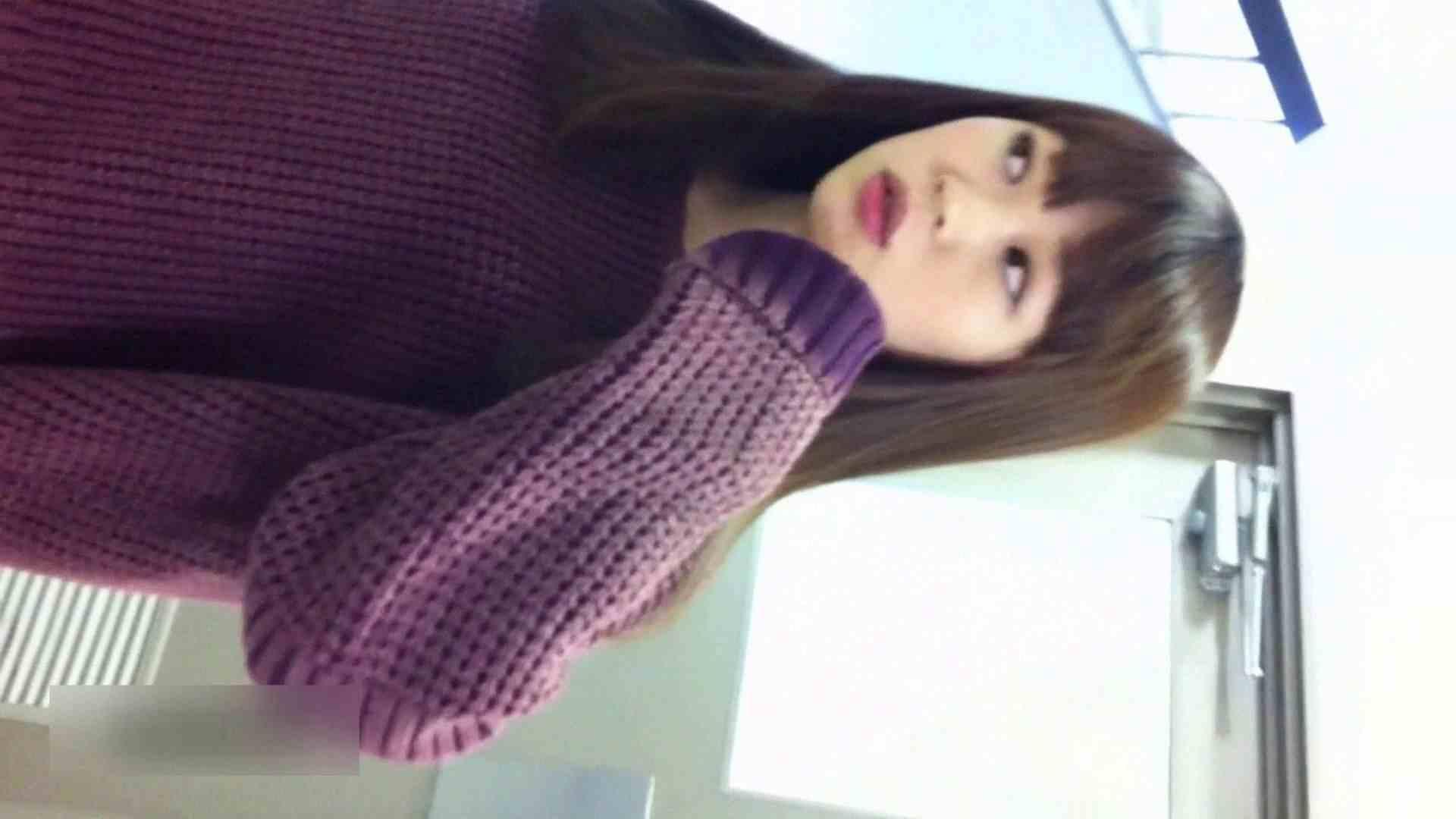 お姉さんの恥便所盗撮! Vol.14 魅力 のぞき動画画像 104pic 58